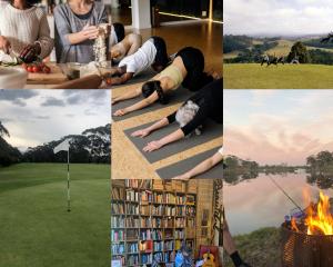 pictures of different wellness activities